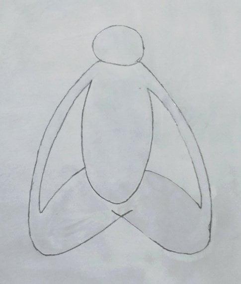 Light grey body or grey body or Vamadeva Sharira